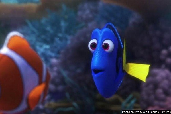 Dependably great 'Finding Dory' is the perfect summer distraction for your family