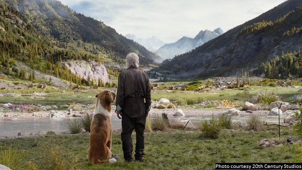 Read more about the article Latest adaptation of 'The Call of the Wild' is the best one to date